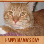 Max Mondays: Happy Mama's Day